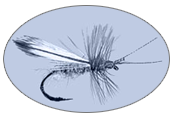Johns Guide Service Adirondack Fly Fishing